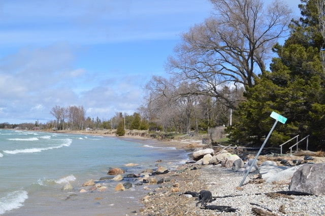 Photos of the Shoreline, May 8, 2020